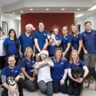 Central Veterinary Services - Vétérinaires