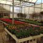 Mori Gardens Inc - Garden Centres - 905-468-7863