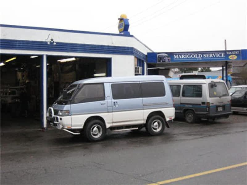 photo Marigold Service Ltd