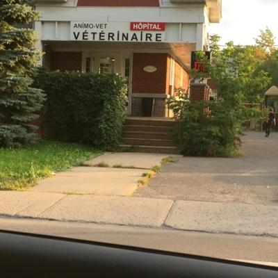 Hôpital Vétérinaire Animo-Vet - Pet Food & Supply Stores - 450-443-1461