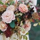 Astilbe - Florists & Flower Shops - 514-277-3042