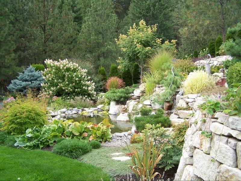 Synergy landscape design ltd kelowna bc 2351 for Landscape limited