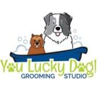 You Lucky Dog Grooming Studio - Logo