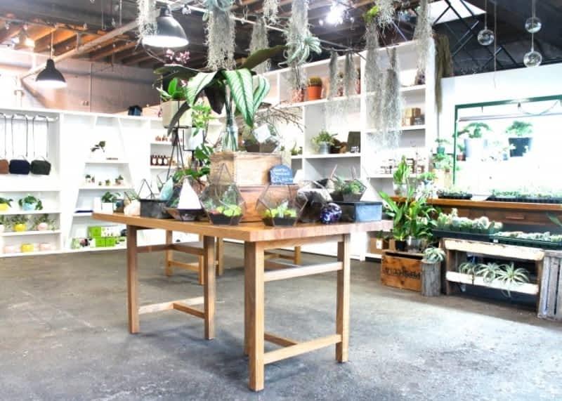 photo Crown Flora Studio
