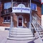 Hôpital Vétérinaire Métro Iberville - Veterinarians
