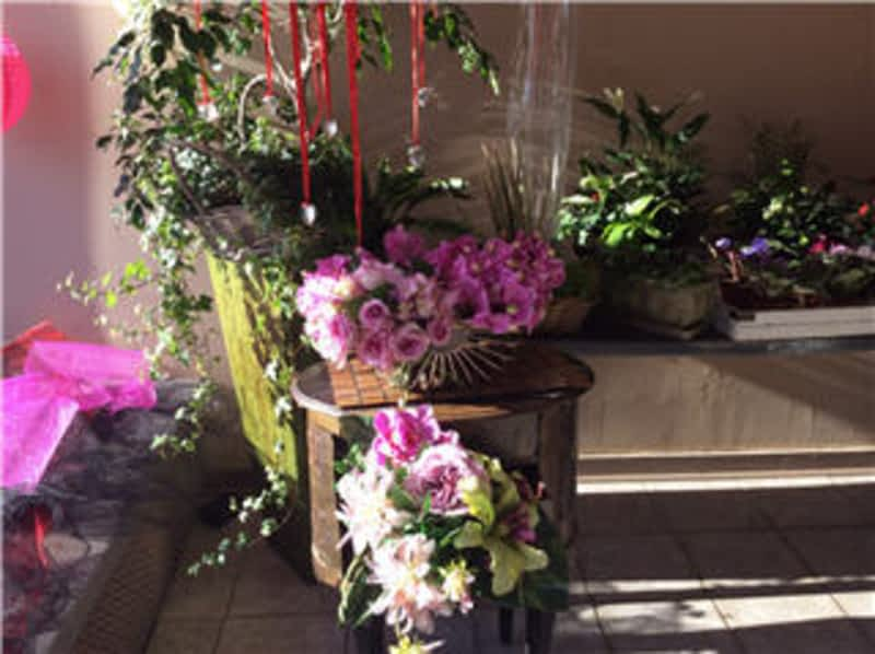 photo Verdi Florists