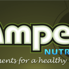 Amped Nutrition Inc. - Nutrition Consultants - 905-951-7997