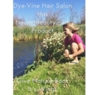 Dye-Vine Hair Salon - Eyelash Extensions - 250-719-1664