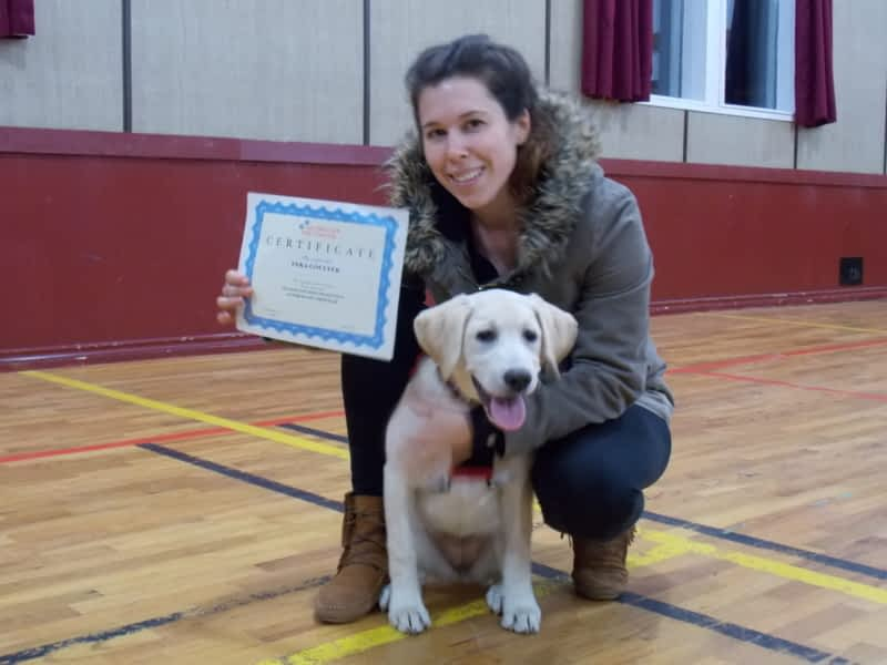 Dog Training Classes Halifax