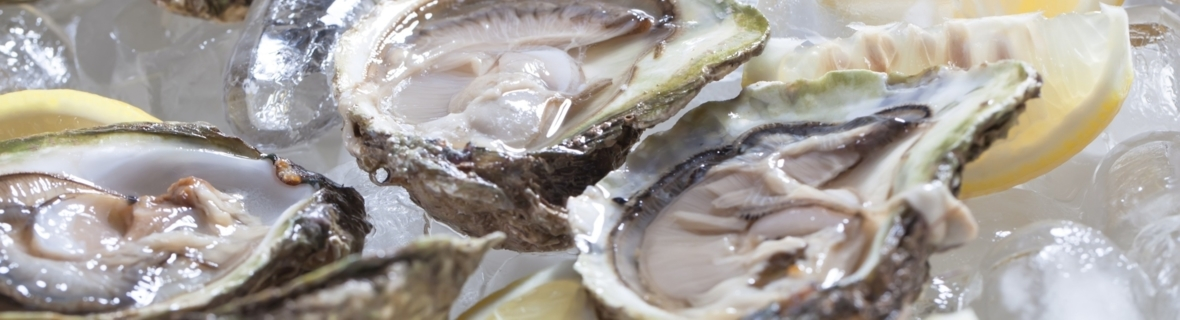 Where to get buck-a-shuck oysters in Toronto