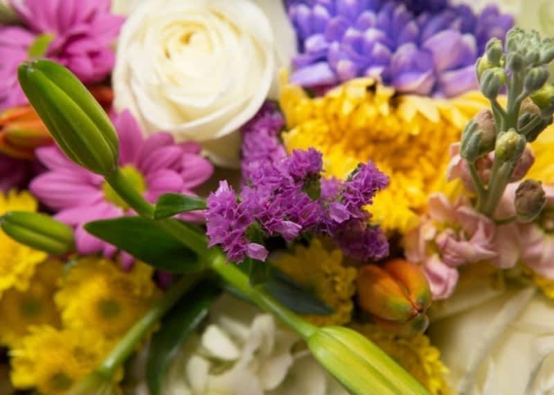 photo Florabunda Inc