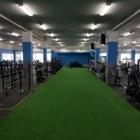 True North Fitness Ltd - Fitness Gyms