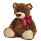 Bears & Wishes - Florists & Flower Shops - 780-459-6788