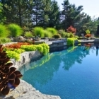 Eco-Pools - Landscaping Equipment & Supplies - 905-473-3333