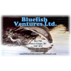 Bluefish Ventures Ltd. - Plumbing, Heating & Gas Fitting - Plumbers & Plumbing Contractors