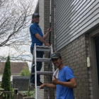 Dammy's Window Cleaning Service