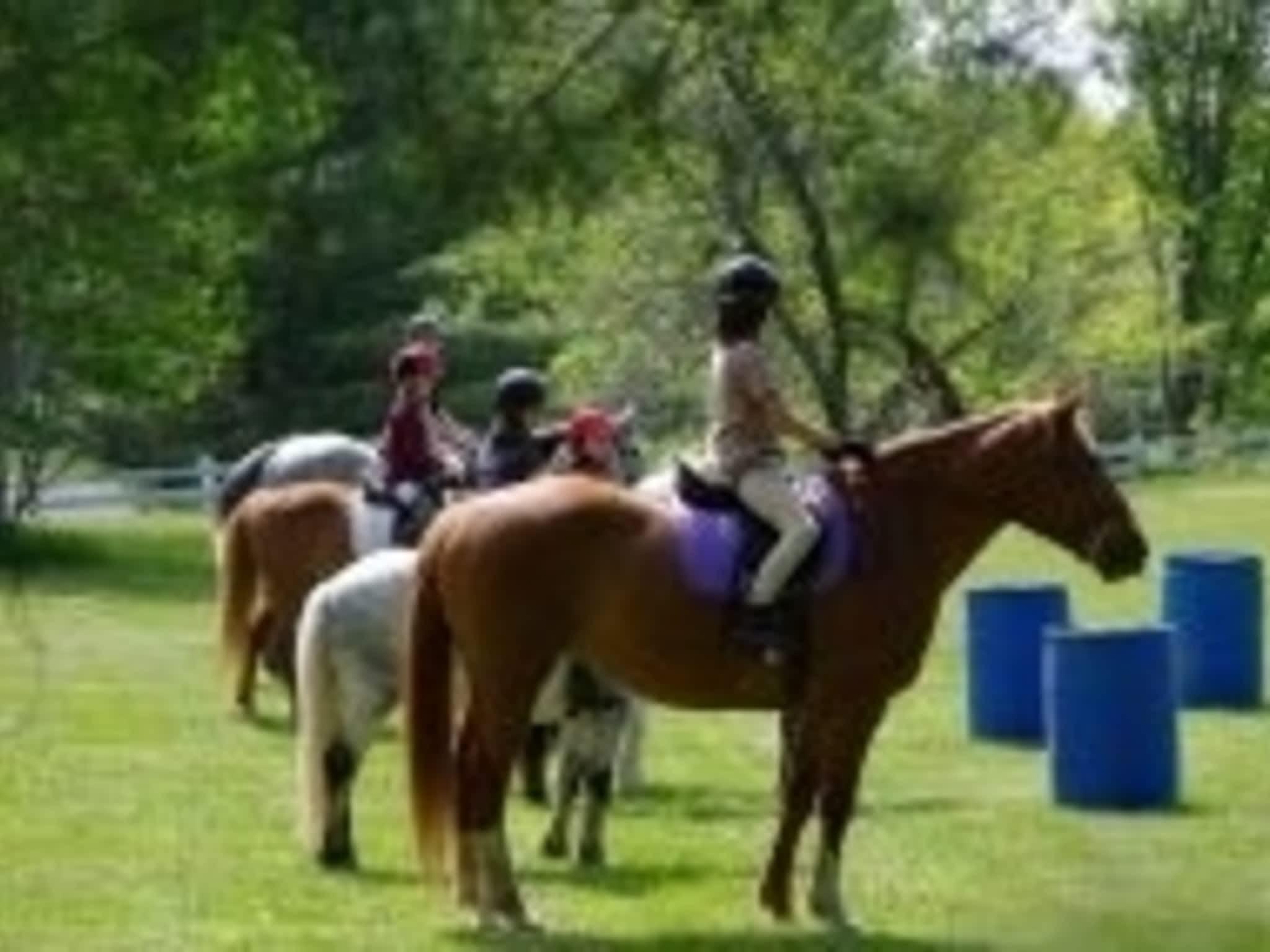 photo International Equestrian Centre