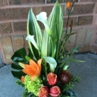 in bloom - Florists & Flower Shops - 613-549-0569