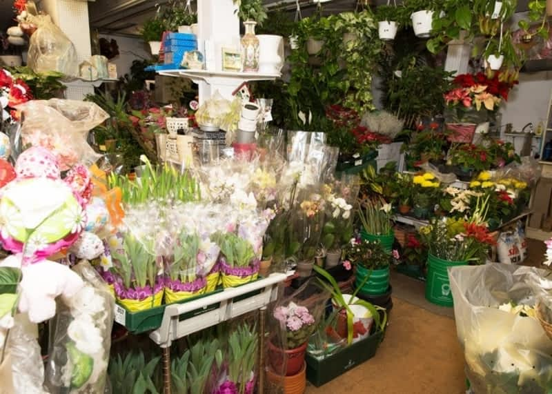 photo Shams Florist & Gifts