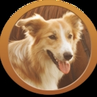 Quinn Les Animaux Domestiques - Pet Food & Supply Stores - 819-843-9601
