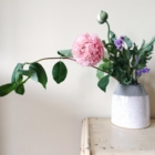Forage & Bloom - Florists & Flower Shops