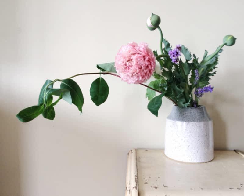 photo Forage & Bloom