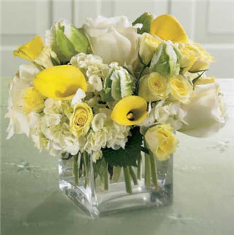 photo Tidy's Flowers