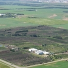 Cheyenne Tree Farms Ltd - Centres du jardin