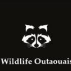 Wildlife Outaouais - Pest Control Services - 819-968-5797