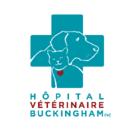 Hôpital Vétérinaire de Buckingham - Vétérinaires