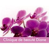 Clinique De Beauté Diane - Waxing