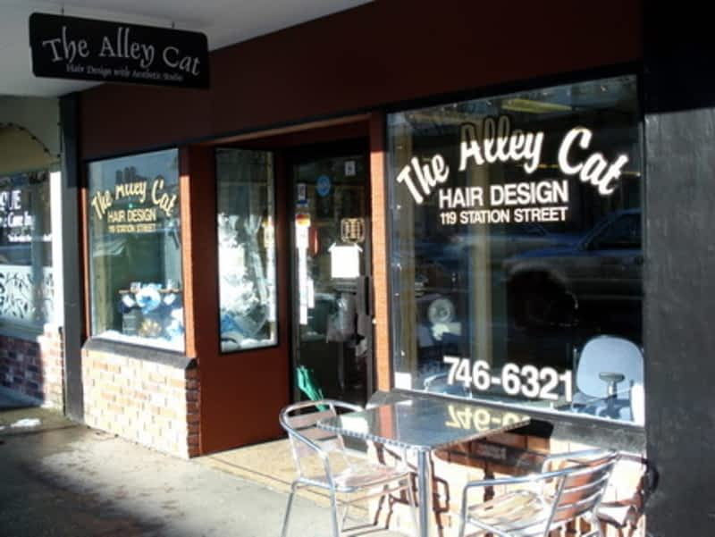 Alley Cat Hair Design The Duncan Bc