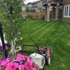 View Lemmon's Lawn Care's Calgary profile