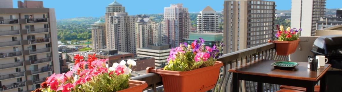 Top rooftop patios in Edmonton