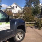 Northern Tree Solutions - Tree Service - 905-806-1471