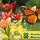 View Humber Nurseries Ltd's Schomberg profile