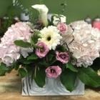 Baroness Floral Design - Florists & Flower Shops