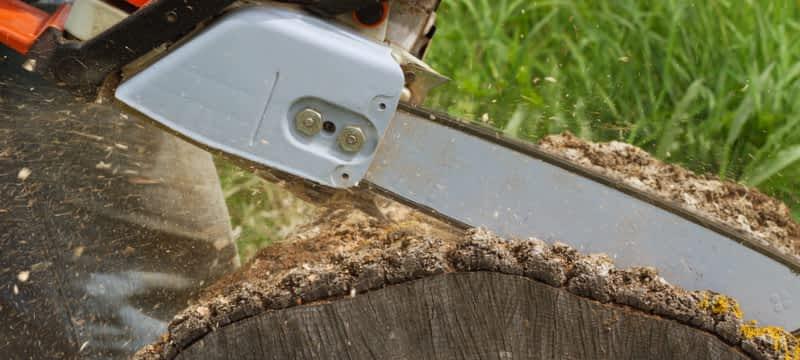 photo Aberdeen Tree Service - Residential Specialist