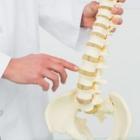 Clinique Chiropratique Vision Santé - Chiropractors DC