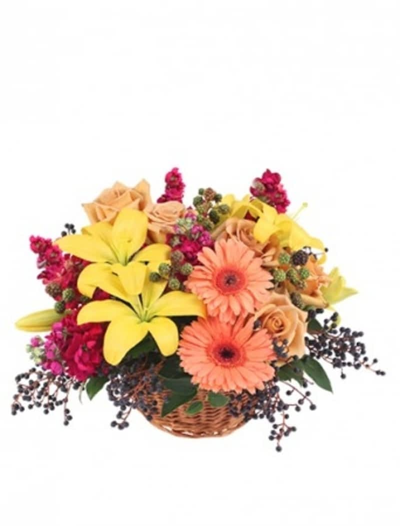 In full bloom florists inc winnipeg mb pembina