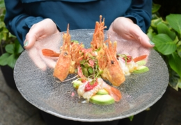 Vancouver restaurants serving spot prawns