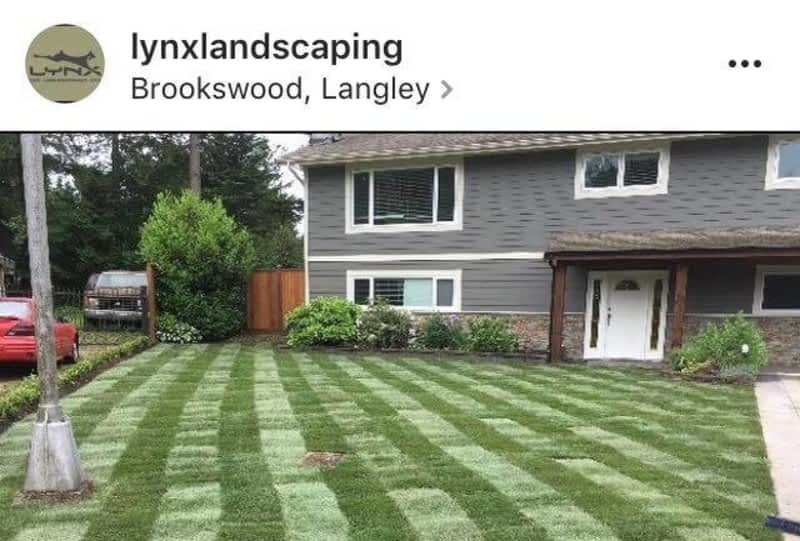 photo Lynx Landscaping