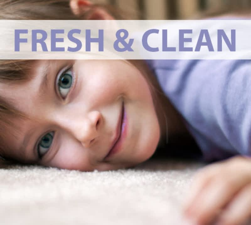photo Love Your Rug Cleaning Toronto