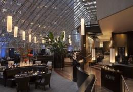 Best Restaurants for TIFF Star Spotting in Toronto