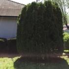 Maître Vert Inc - Paysagistes et aménagement extérieur - 514-779-8378