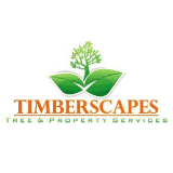 Timberscapes Inc - Tree Service - 905-251-7422