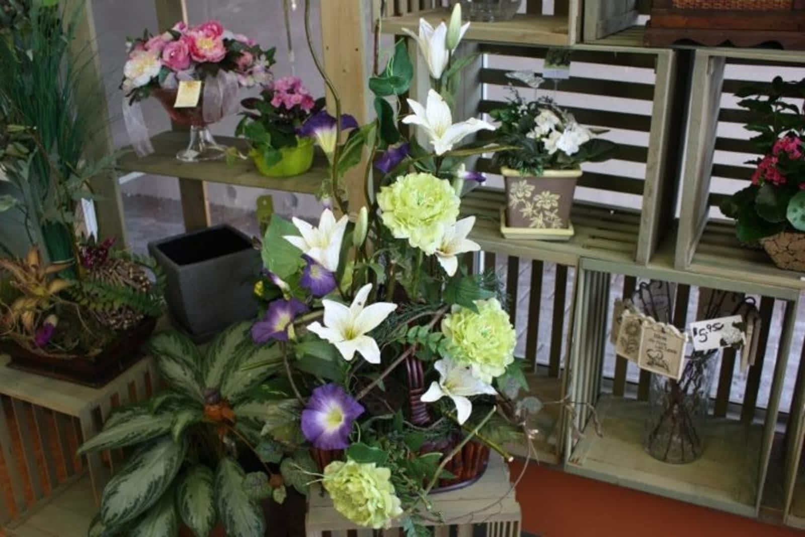 Bolton florist inc opening hours 368 queen st s bolton on izmirmasajfo