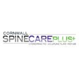 Voir le profil de Cornwall Spine Care Plus - Cornwall