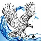 Voir le profil de Les Systèmes d'Eau Eagle Rive-Sud Inc. - Saint-Armand