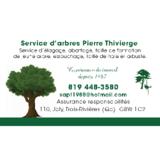 Service D'arbres Pierre Thivierge - Service d'entretien d'arbres